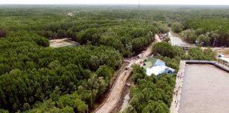Toàn cảnh Khu Công viên văn hóa - Du lịch Mũi Cà Mau.
