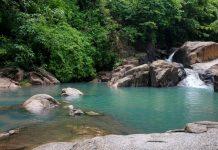 Suối Đá hay còn gọi là Suối Tiên thuộc huyện Tân Thành, tỉnh Bà Rịa - Vũng Tàu.