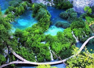 Khám phá vườn quốc gia Bạch Mã