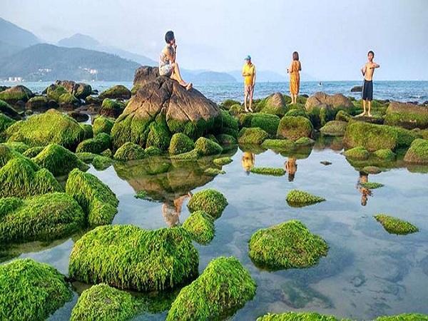 Bãi rạn nam ô Đà Nẵng