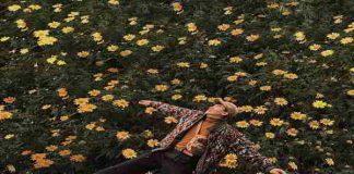 Tháng 10 đến Đà Lạt ngắm hoa dã quỳ nở rực rỡ
